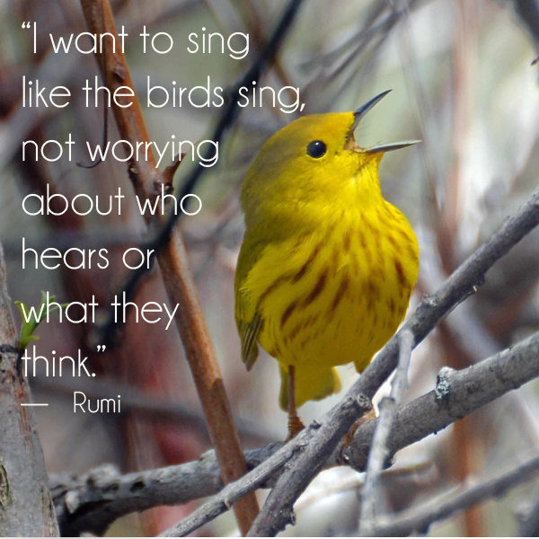 sing like the birds